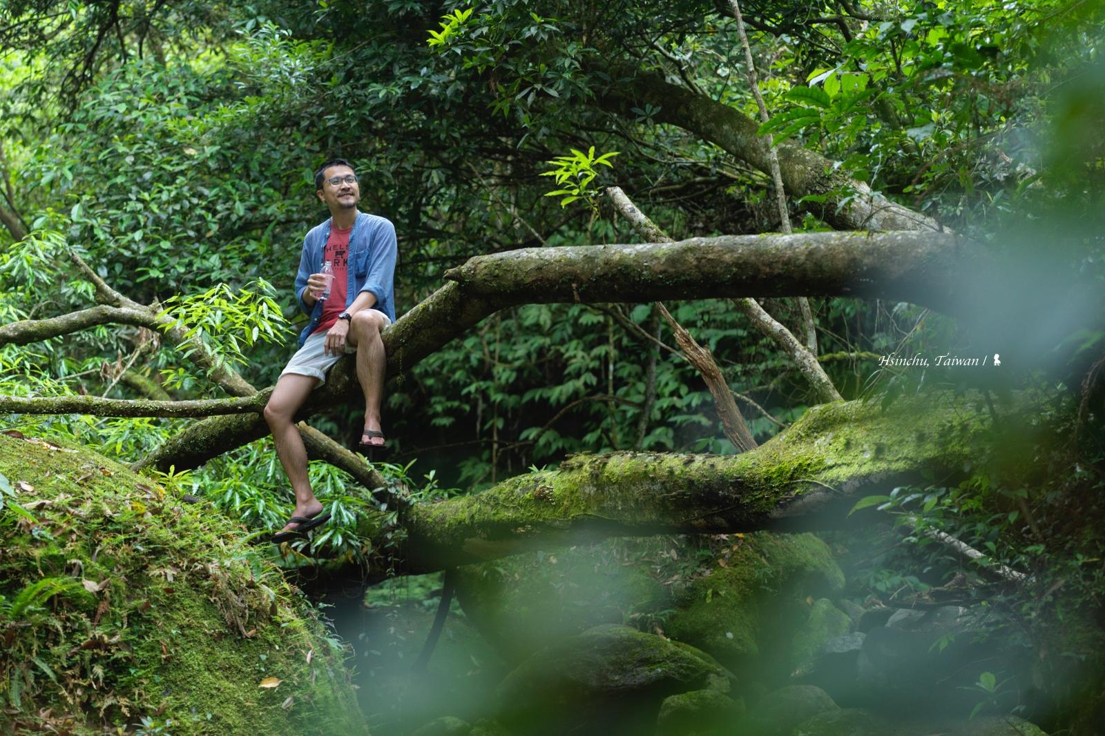 溯溪找西瓜 看螢火蟲大爆發,一泊五食最狂的野奢露營:飛鳥恰恰