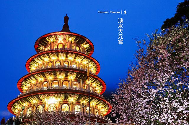 天元宮的櫻櫻夜夜,光影與時間聯手的最美麗騙局