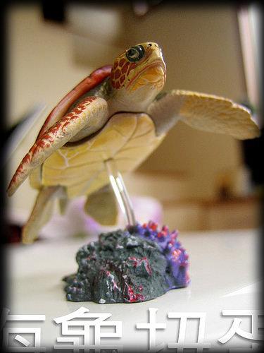 日本伊勢工作之旅- 第一個日本國購買品:海龜扭蛋