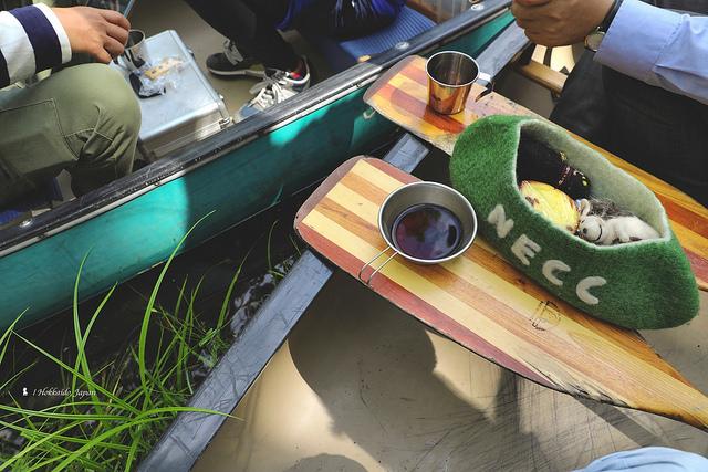 船槳送現煮咖啡  釧路川源的獨木舟漂流